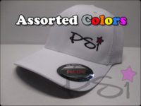 PSI trucker hat (Small)